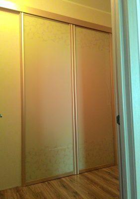 Раздвижные двери для гардеробной с рисунком
